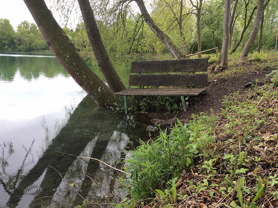 Bank am Olchinger See